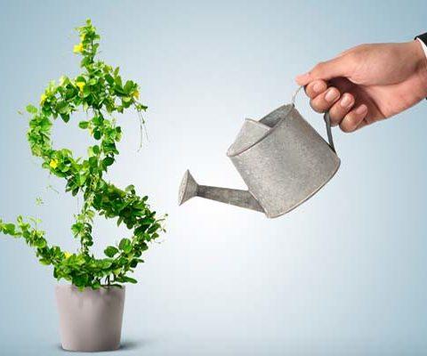 investir em seus empreendimentos online